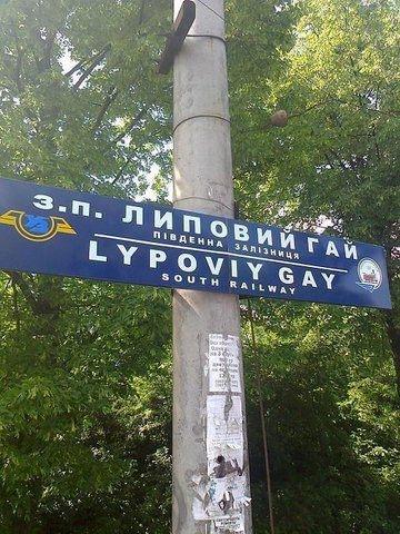 http://life.img.pravda.com/images/doc/6/4/64dc82e-1.jpg
